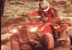 ATV Desert Run