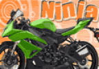 Fix Bike Kawasaki Ninja
