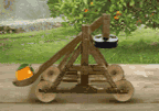 Innocent Catapulp