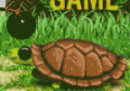 Turtles Battles
